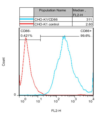 CHO-K1/CD86 Stable Cell Line