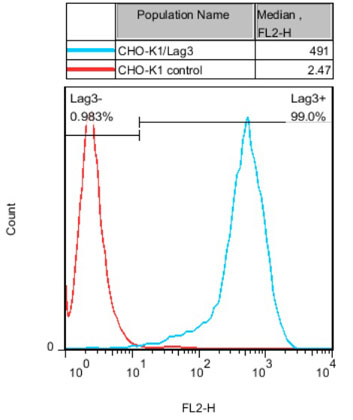 CHO-K1/Lag3 Stable Cell Line