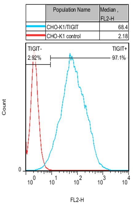 CHO-K1/TIGIT Stable Cell Line