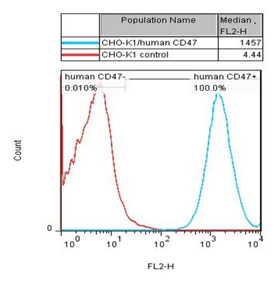 CHO-K1/human CD47 Stable Cell Line