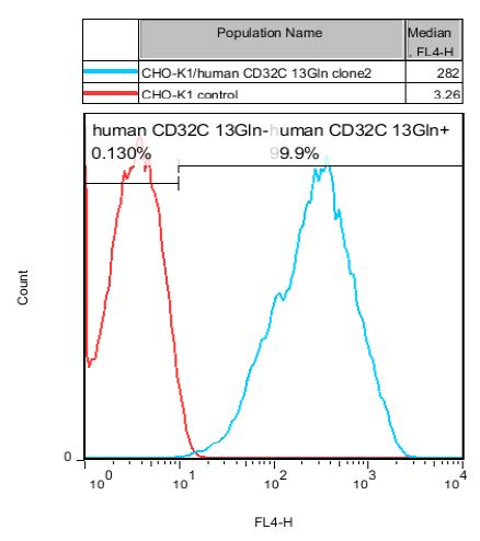 CHO-K1/CD32C 13Gln Stable Cell Line
