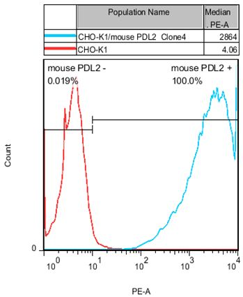 CHO-K1/mouse PD-L2 Stable Cell Line
