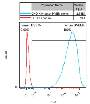CHO-K1/HVEM Stable Cell Line