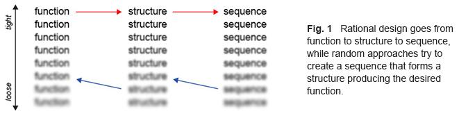 蛋白质工程服务 - 金斯瑞生物科技有限公司