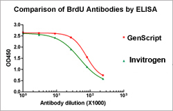 THE™ Elite Antibody