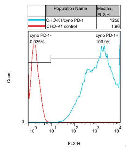 CHO-K1/cyno PD-1 Stable Cell Line